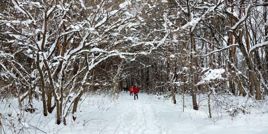 日本 - 福島·冬季戶外旅遊-猪苗代湖、五色沼健行03