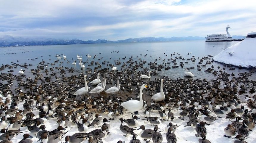 日本 - 福島·冬季戶外旅遊-猪苗代湖、五色沼健行14