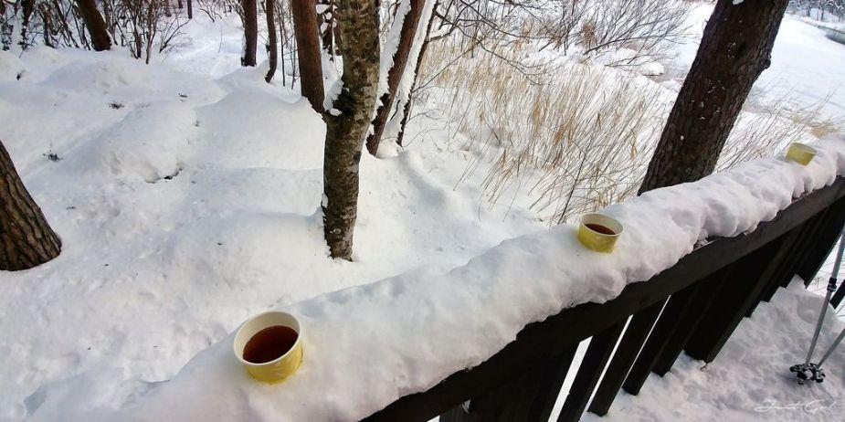 日本 - 福島·冬季戶外旅遊-猪苗代湖、五色沼健行24