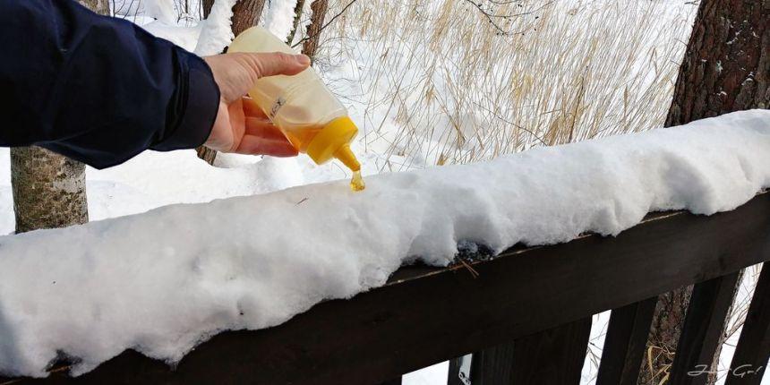 日本 - 福島·冬季戶外旅遊-猪苗代湖、五色沼健行25