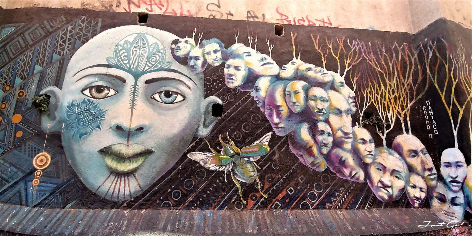 智利 - 聖地牙哥後花園·Valparaiso免費導覽經典景點一日小旅行16