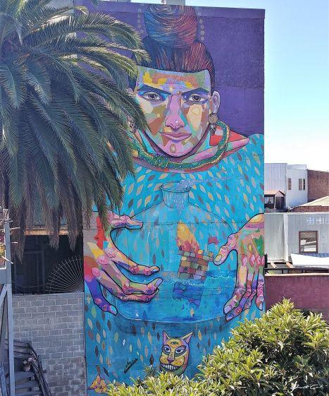 智利 - 聖地牙哥後花園·Valparaiso免費導覽經典景點一日小旅行6