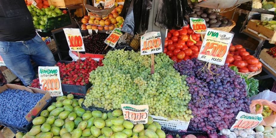 智利 - 聖地牙哥必吃美食推薦·海鮮、水果、雞腿、豬牛排與紅酒08_