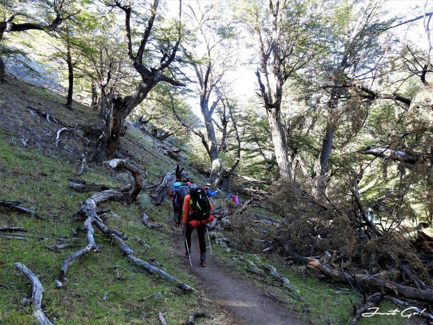 阿根廷 - Patagonia健行Chalten 4天3夜自助攻略-行程、交通、費用、季節、裝備26