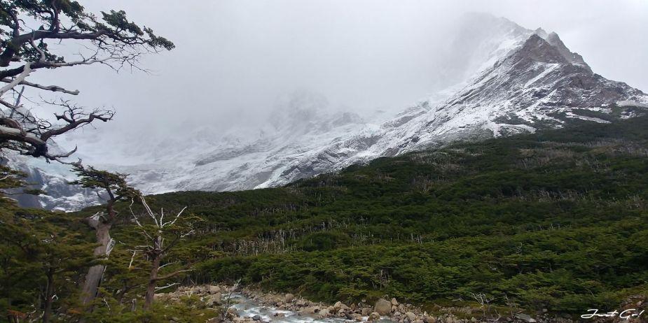 智利 - 【國家地理】一生必去景點·百內國家公園W健行4天遊記104