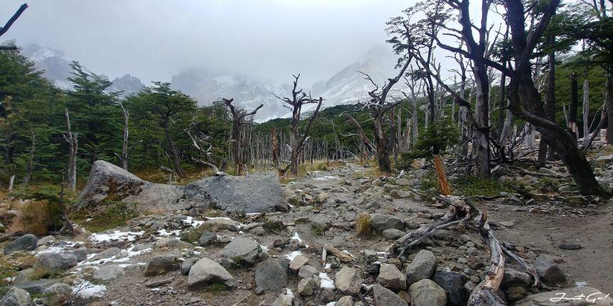 智利 - 【國家地理】一生必去景點·百內國家公園W健行4天遊記106