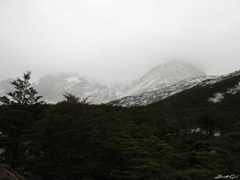 智利 - 【國家地理】一生必去景點·百內國家公園W健行4天遊記112