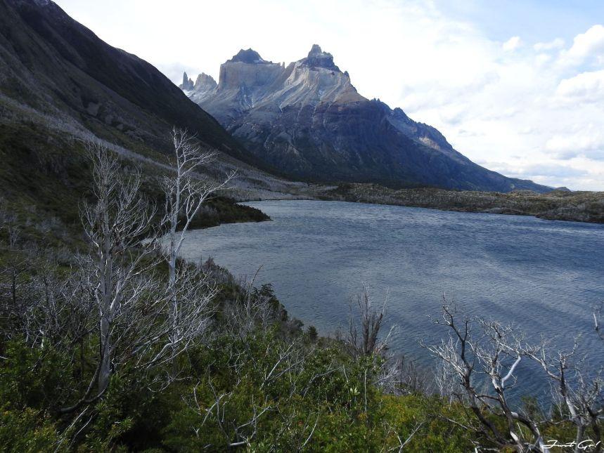 智利 - 【國家地理】一生必去景點·百內國家公園W健行4天遊記124