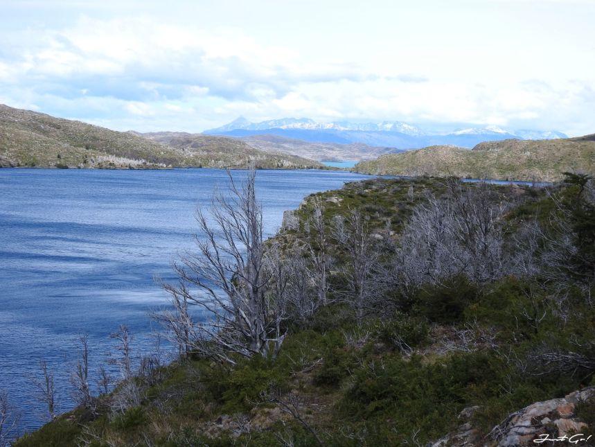 智利 - 【國家地理】一生必去景點·百內國家公園W健行4天遊記125