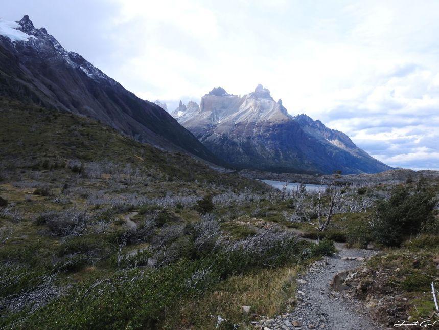 智利 - 【國家地理】一生必去景點·百內國家公園W健行4天遊記126