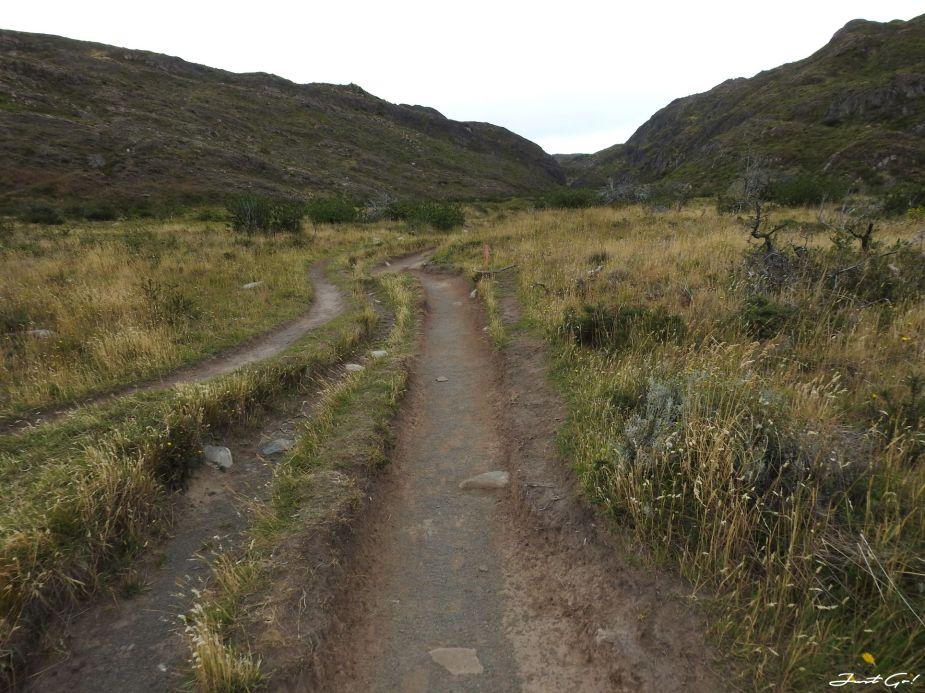 智利 - 【國家地理】一生必去景點·百內國家公園W健行4天遊記138