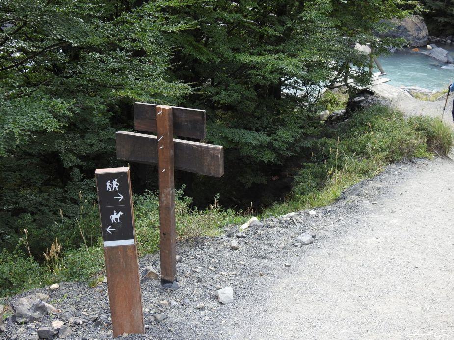 智利 - 【國家地理】一生必去景點·百內國家公園W健行4天遊記15