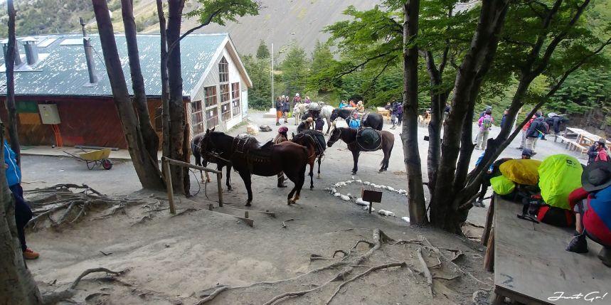 智利 - 【國家地理】一生必去景點·百內國家公園W健行4天遊記26