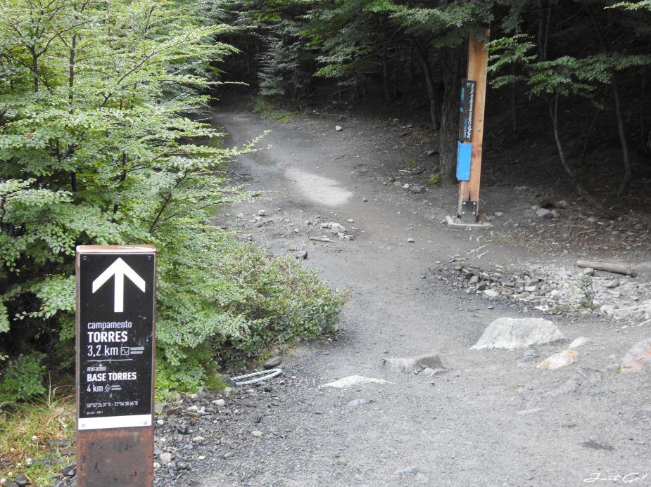 智利 - 【國家地理】一生必去景點·百內國家公園W健行4天遊記28