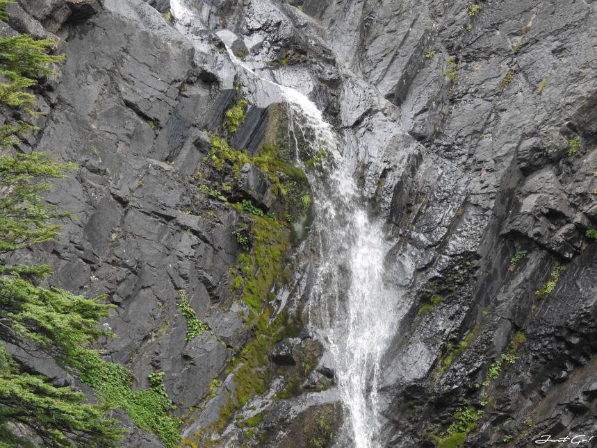 智利 - 【國家地理】一生必去景點·百內國家公園W健行4天遊記43