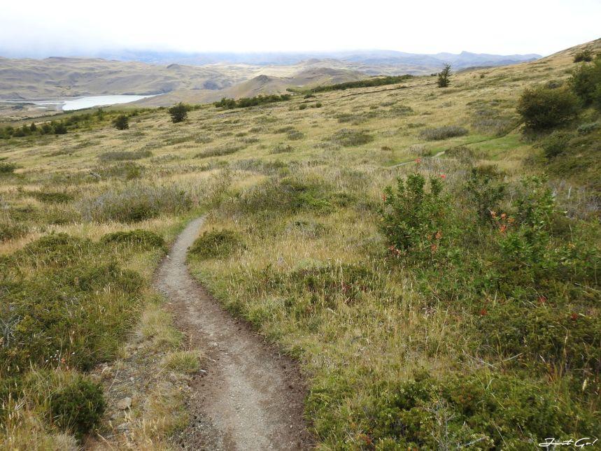 智利 - 【國家地理】一生必去景點·百內國家公園W健行4天遊記53