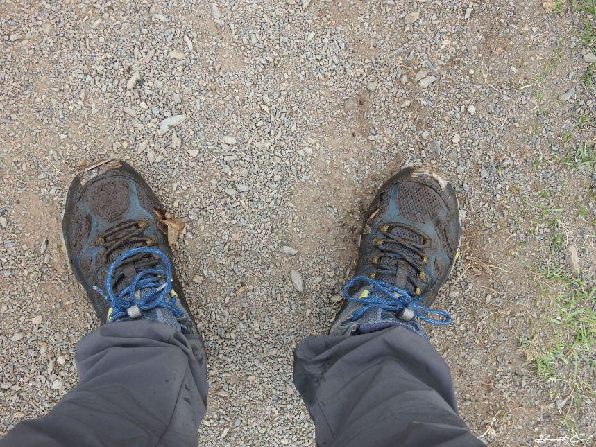 智利 - 【國家地理】一生必去景點·百內國家公園W健行4天遊記58