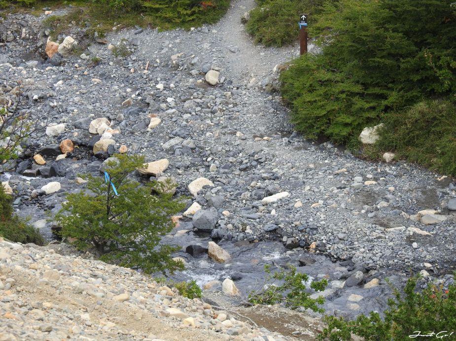 智利 - 【國家地理】一生必去景點·百內國家公園W健行4天遊記59