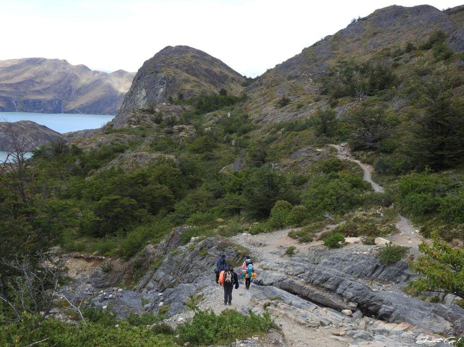 智利 - 【國家地理】一生必去景點·百內國家公園W健行4天遊記67