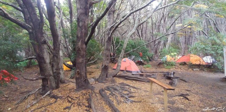 智利 - 【國家地理】一生必去景點·百內國家公園W健行4天遊記92