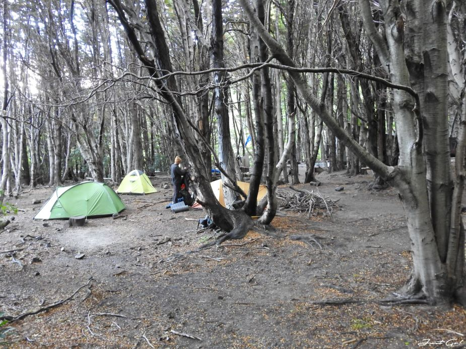 智利 - 【國家地理】一生必去景點·百內國家公園W健行4天遊記94