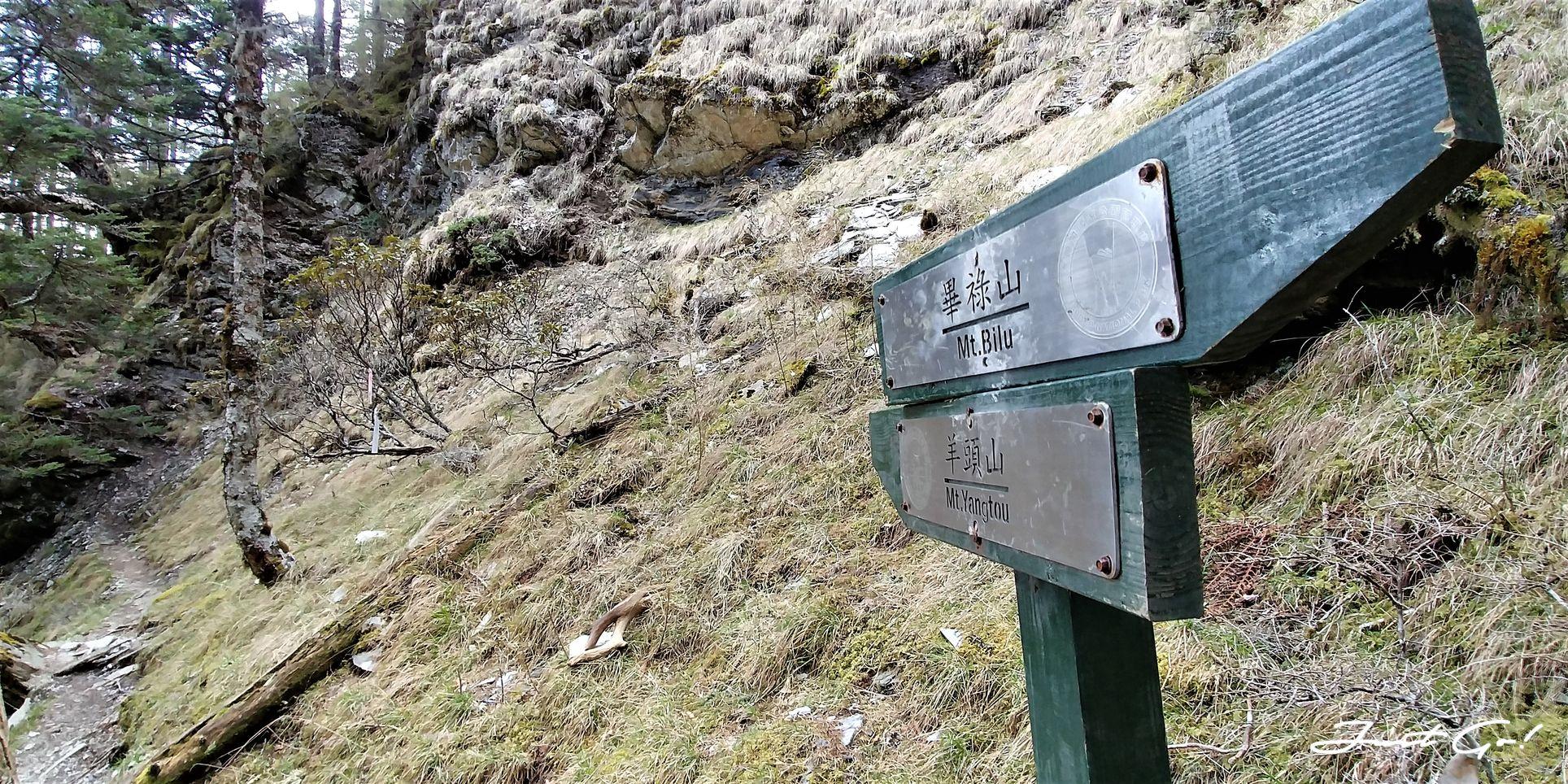 台灣 - 一日百岳·畢祿羊頭縱走單攻紀錄- gpx路線、申請、接駁及遊記10