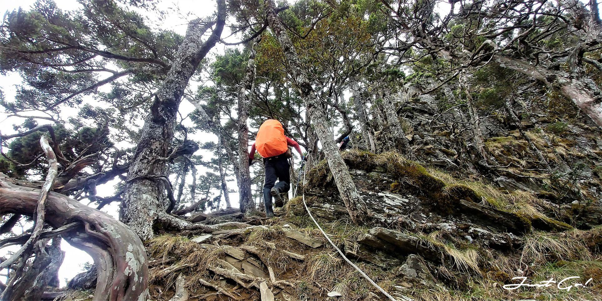 台灣 - 一日百岳·畢祿羊頭縱走單攻紀錄- gpx路線、申請、接駁及遊記15
