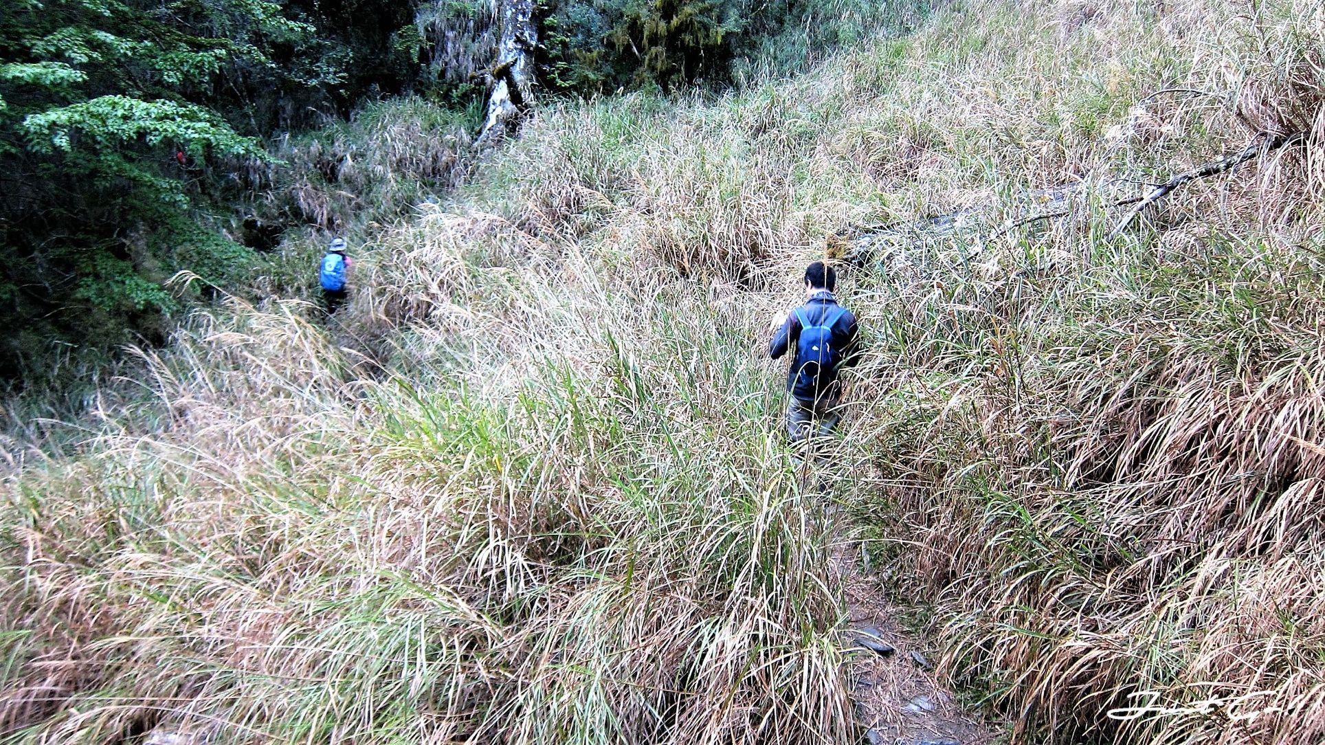台灣 - 一日百岳·畢祿羊頭縱走單攻紀錄- gpx路線、申請、接駁及遊記20