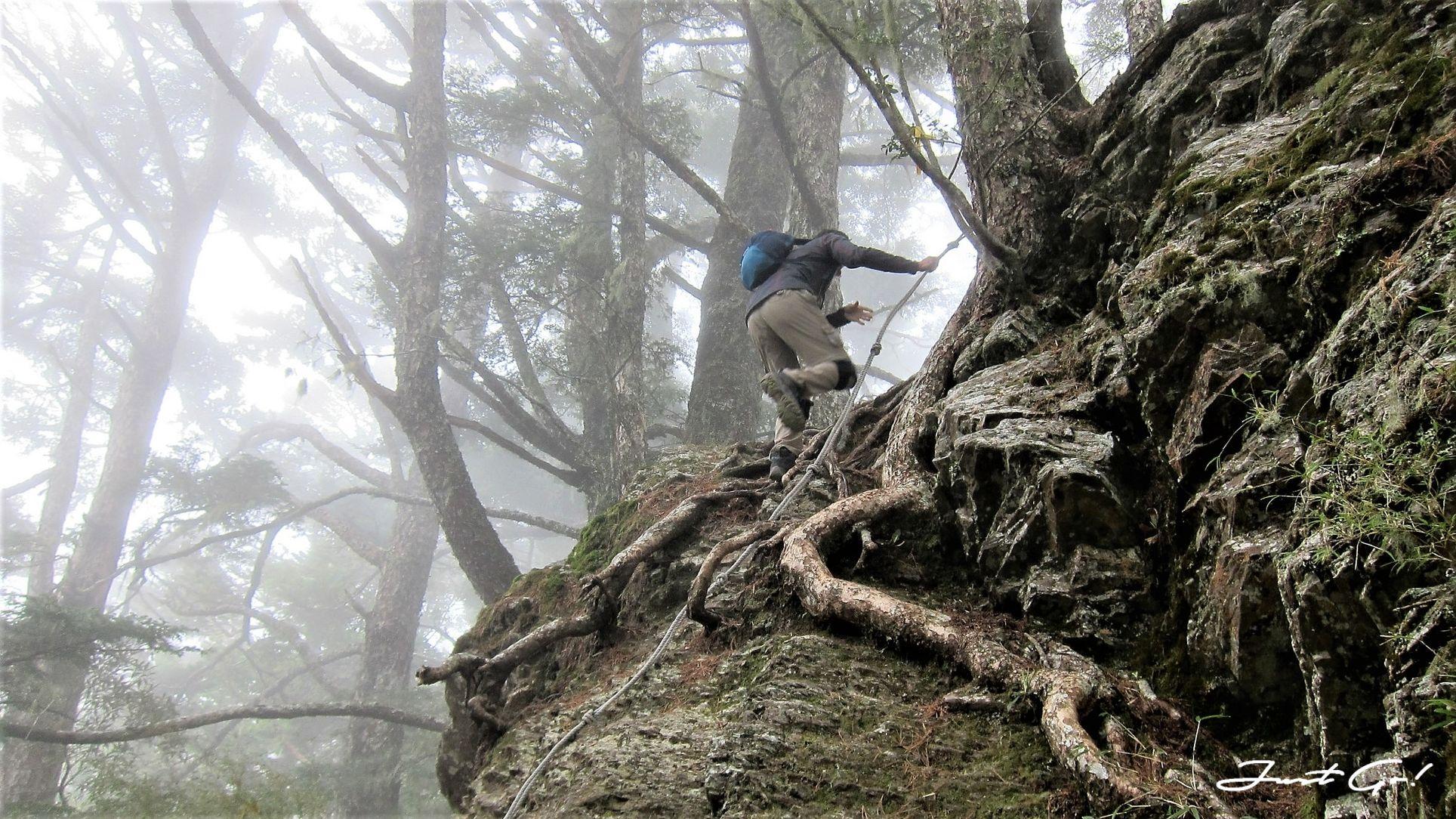 台灣 - 一日百岳·畢祿羊頭縱走單攻紀錄- gpx路線、申請、接駁及遊記22