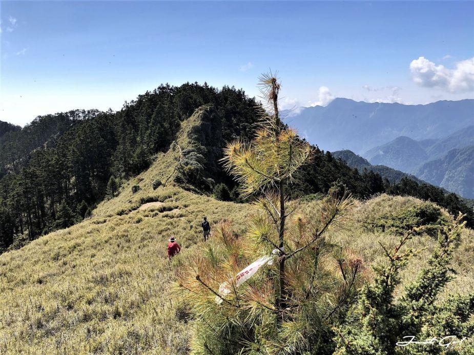 台灣 - 一日百岳·畢祿羊頭縱走單攻紀錄- gpx路線、申請、接駁及遊記25
