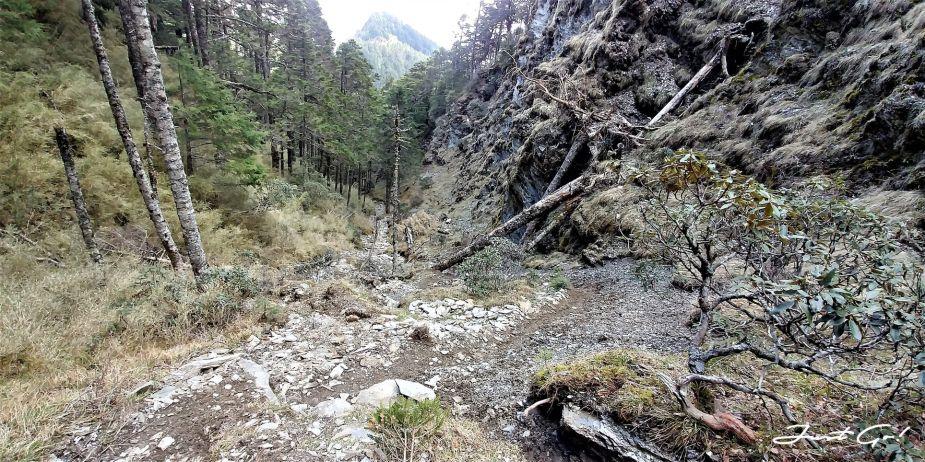 台灣 - 一日百岳·畢祿羊頭縱走單攻紀錄- gpx路線、申請、接駁及遊記9