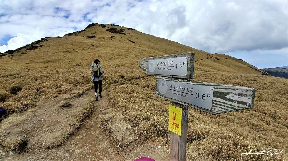 台灣 - 黃金色的奇萊主北·2天1夜紀事-gpx路線、行程、申請、水源28