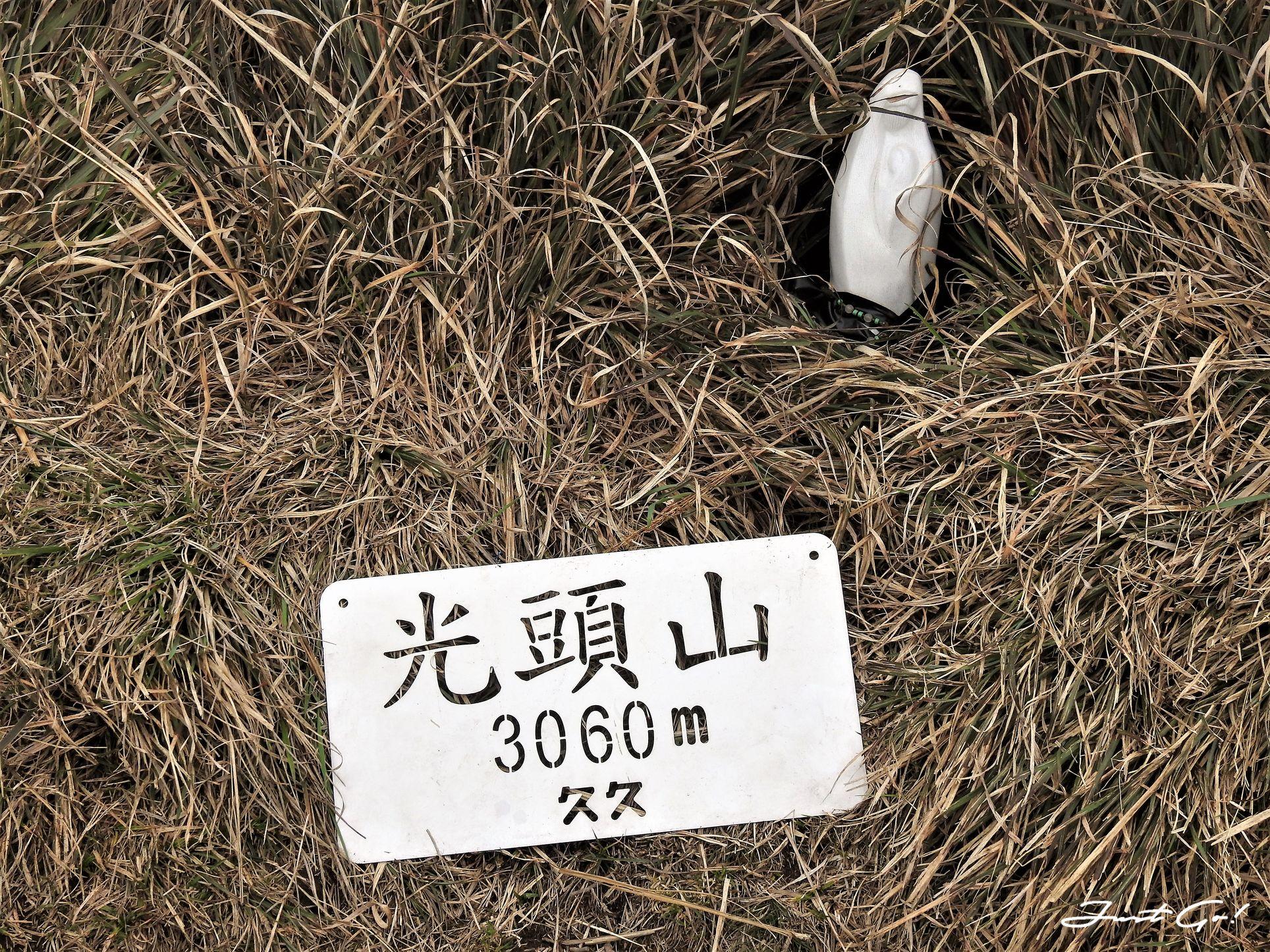 台灣 - 能高安東軍縱走自組隊-5日行程遊記、gpx路線、申請、水源29