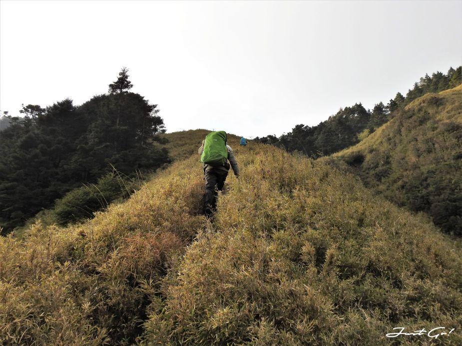 台灣 - 能高安東軍縱走自組隊-5日行程遊記、gpx路線、申請、水源53