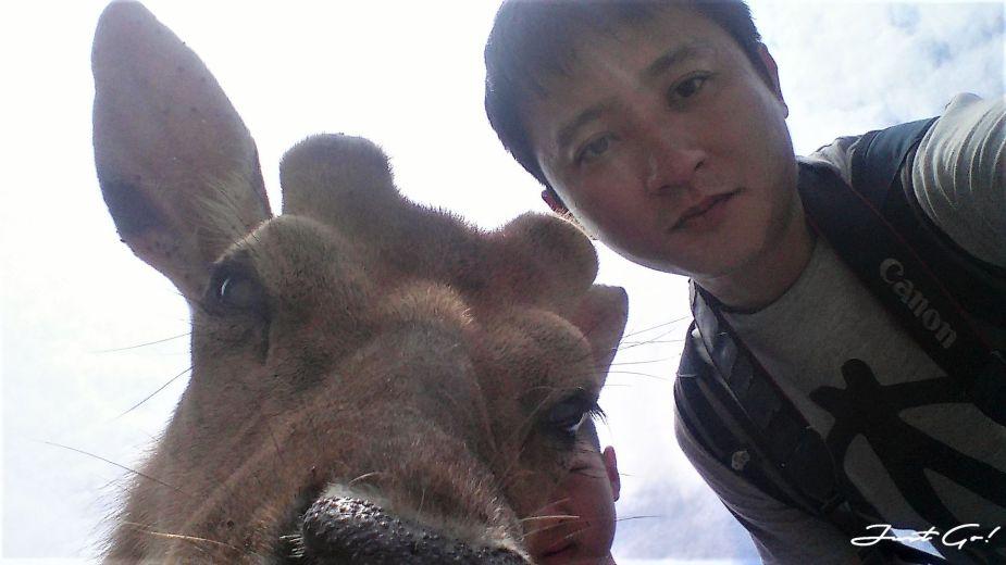 台灣 - 馬祖旅遊必去景點·大坵島·梅花鹿大量出沒-2019交通船班、住宿、美食36