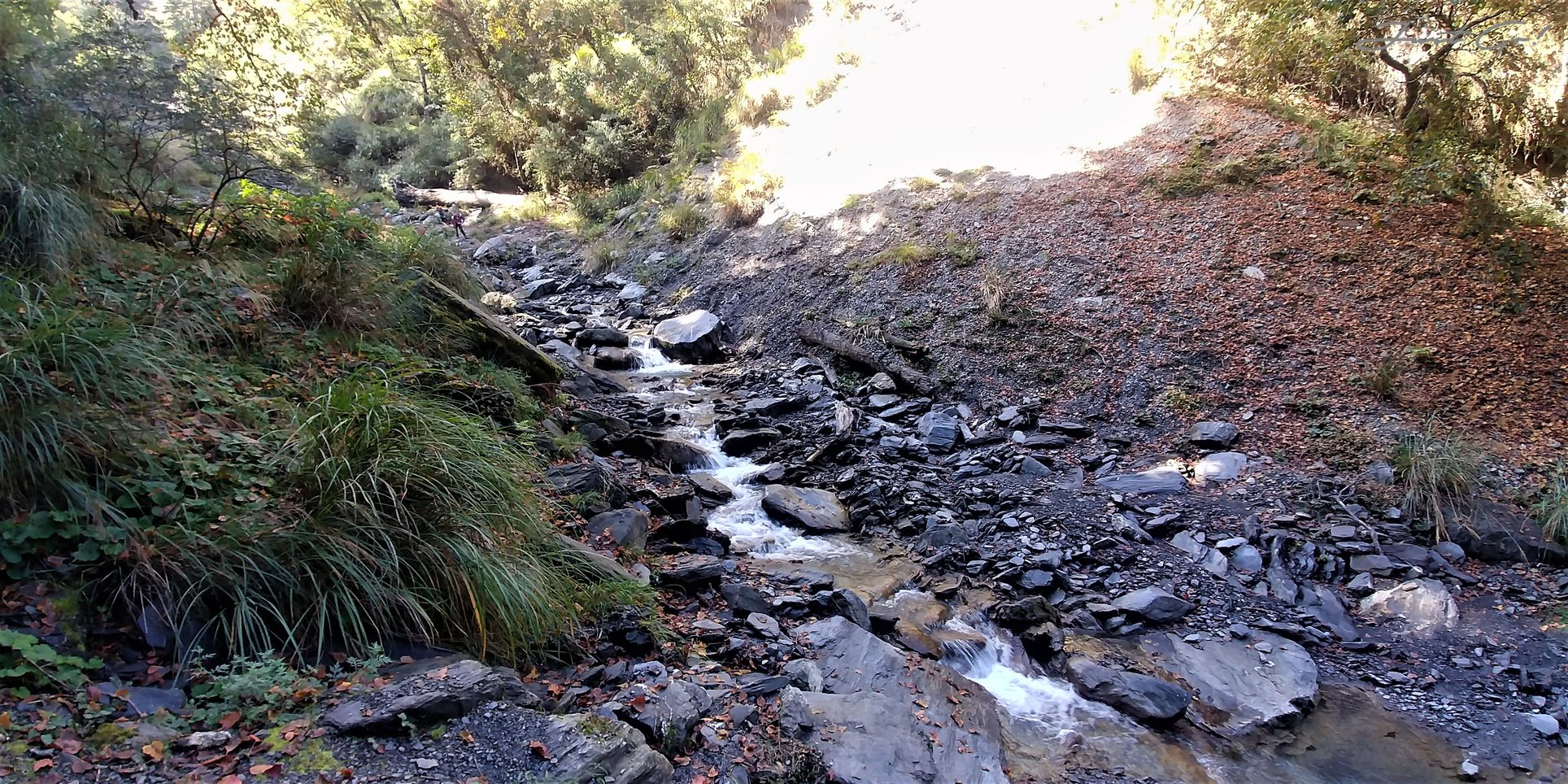 一日百岳·10小時單攻屏風山-新路線地圖gpx、行程規劃、申請、登山口16
