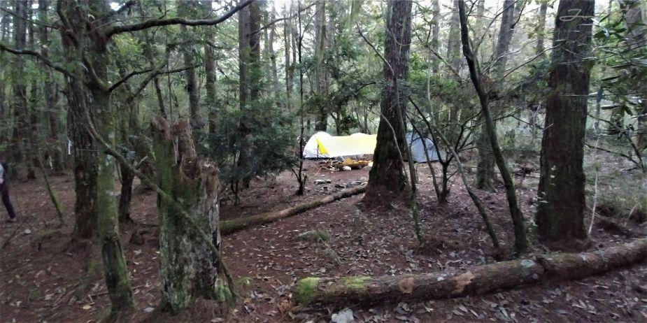 一日百岳·10小時單攻屏風山-新路線地圖gpx、行程規劃、申請、登山口2