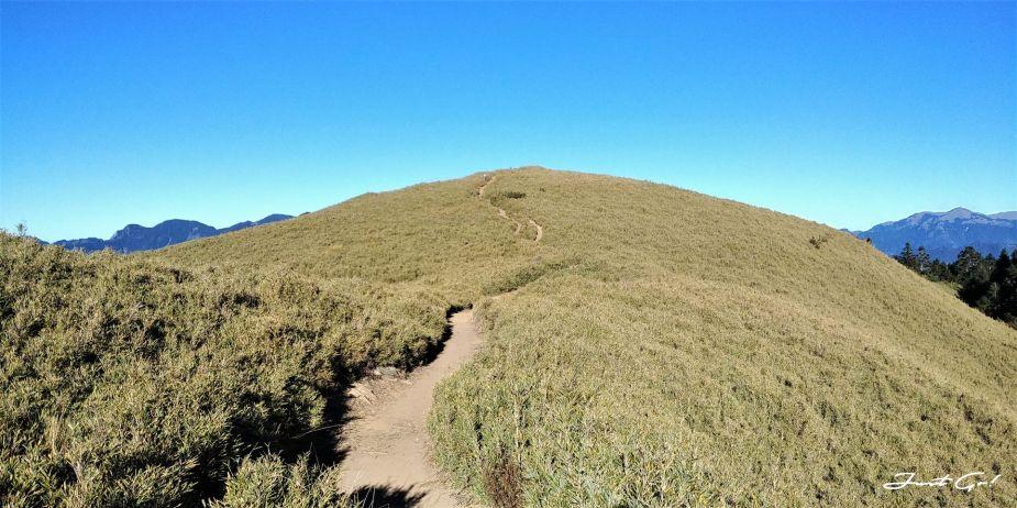 一日百岳·9小時單攻合歡西峰北峰-地圖gpx、行程規劃、申請、登山口11