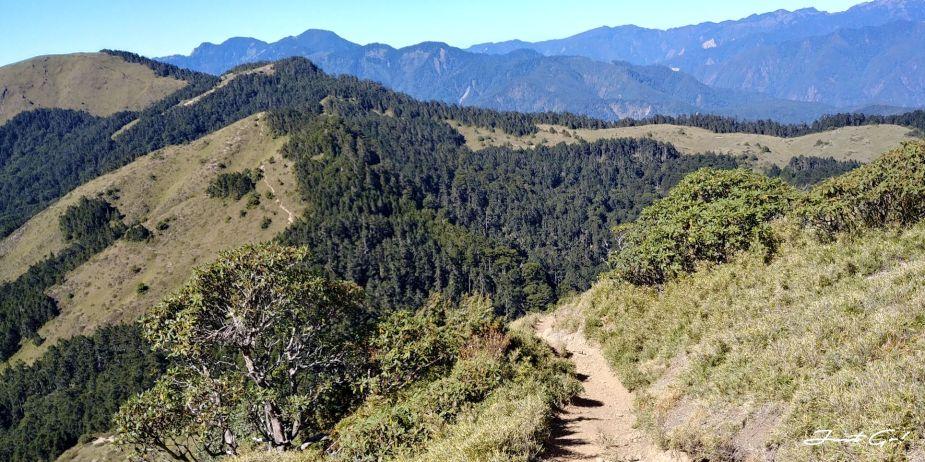 一日百岳·9小時單攻合歡西峰北峰-地圖gpx、行程規劃、申請、登山口29