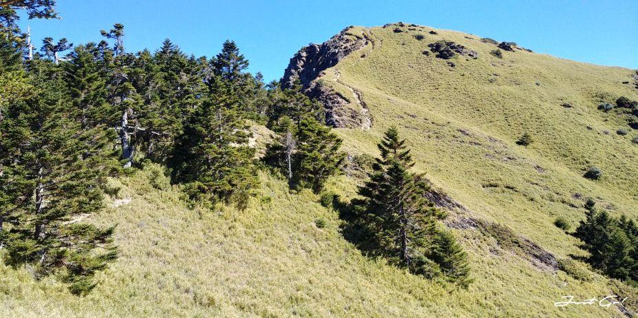 一日百岳·9小時單攻合歡西峰北峰-地圖gpx、行程規劃、申請、登山口30