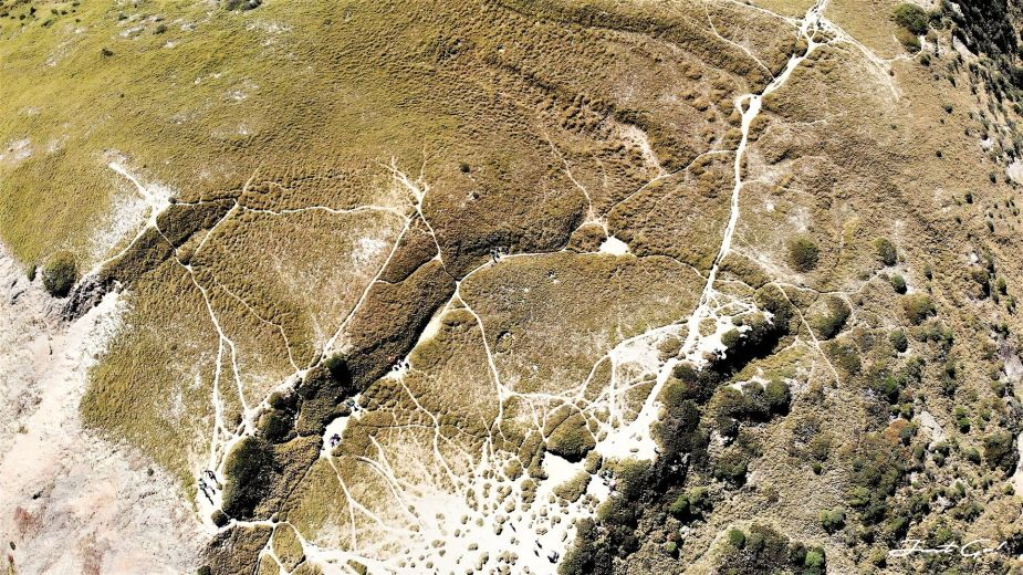 一日百岳·9小時單攻合歡西峰北峰-地圖gpx、行程規劃、申請、登山口38