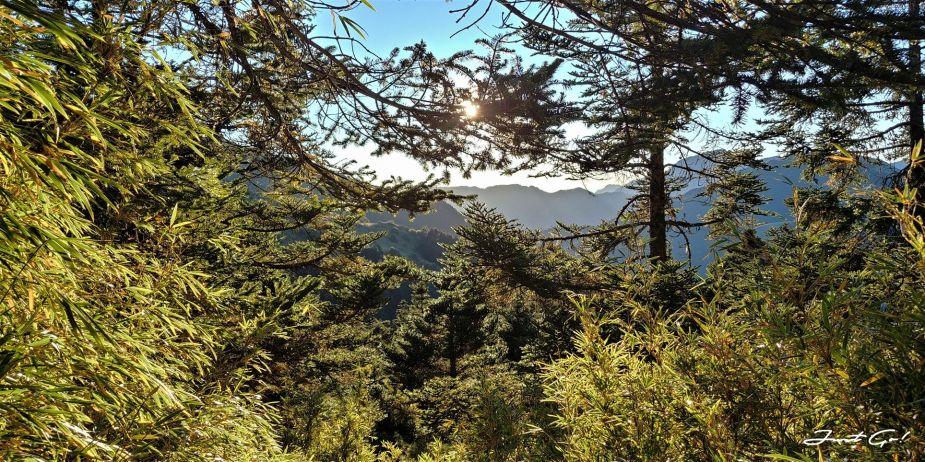 一日百岳·9小時單攻合歡西峰北峰-地圖gpx、行程規劃、申請、登山口7
