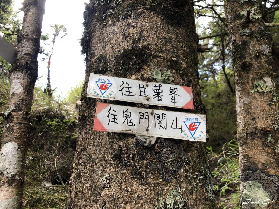 北二段C+級百岳-無明山、甘薯峰3天2夜-gpx路線、行程接駁、申請、水源51