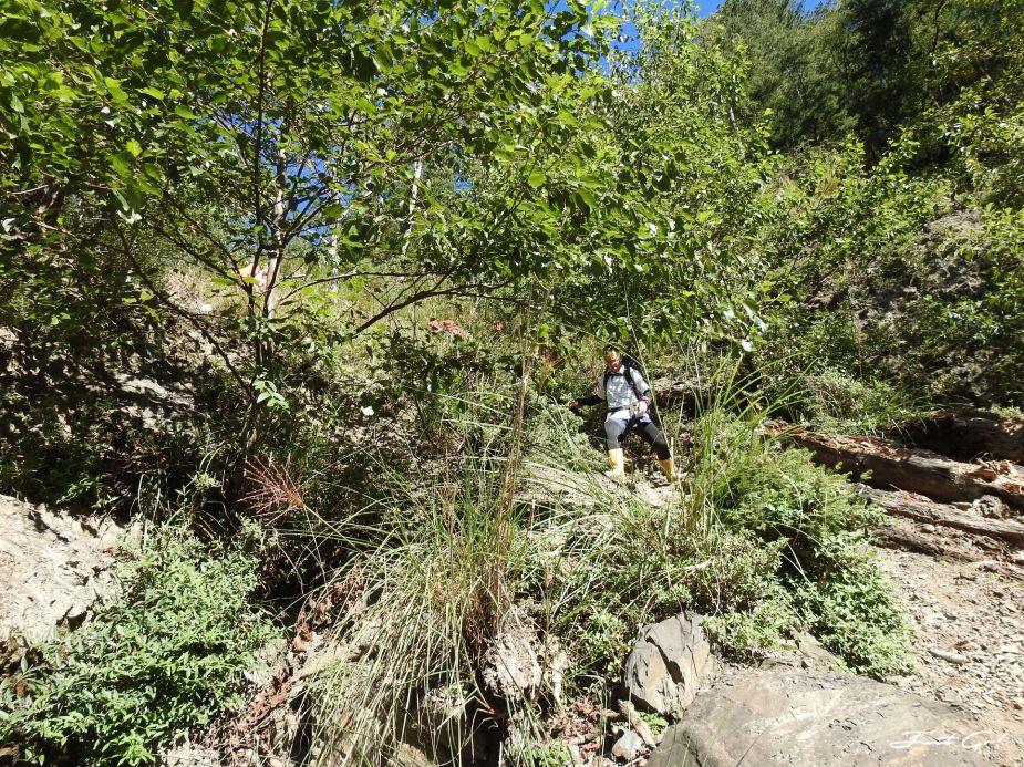 北二段C+級百岳-無明山、甘薯峰3天2夜-gpx路線、行程接駁、申請、水源9